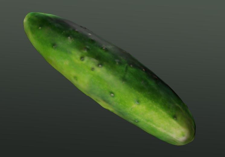 cucumber 3d model
