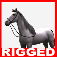 White Horse (Rigged)
