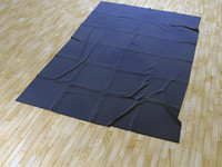 3d 3ds wrinkled carpet
