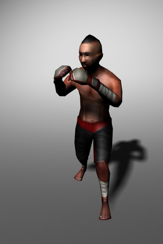 boxer animation fighting 3d 3ds