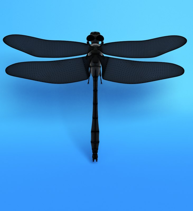 3ds max dragonfly