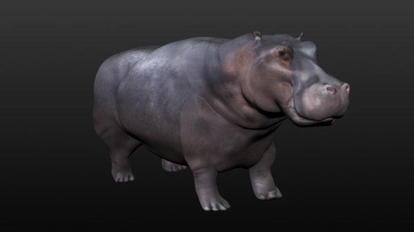 obj hippopotamus hippo