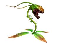 3dFoin Carnivorous Plant