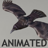 Lowpoly animated raven