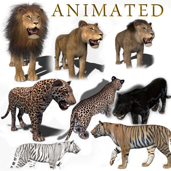 3d cats animation lion model