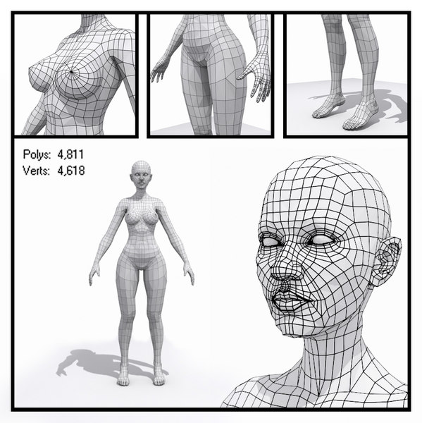 generic female base mesh human max