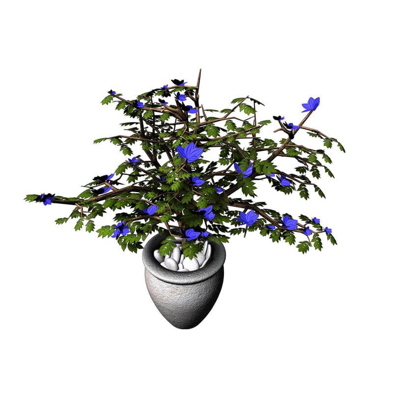 indoor plant 3d obj