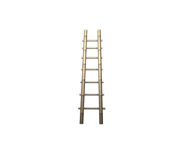free 3ds model ladder