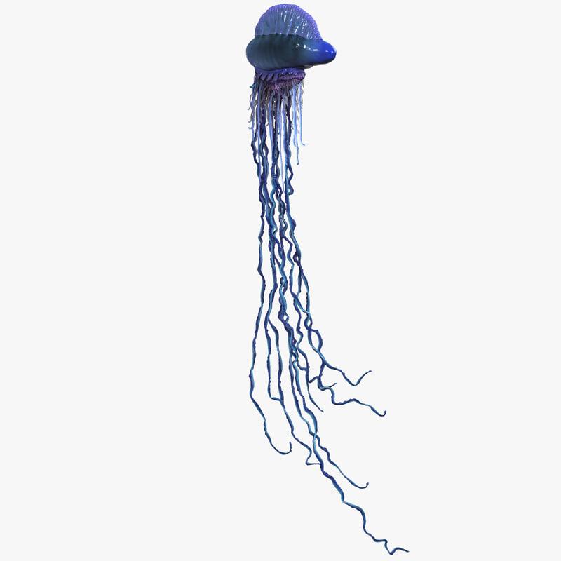 3d jellyfish portuguese man war