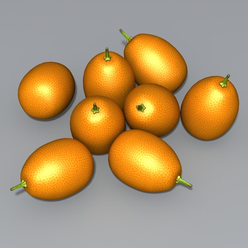 3d kumquats cumquats fruit