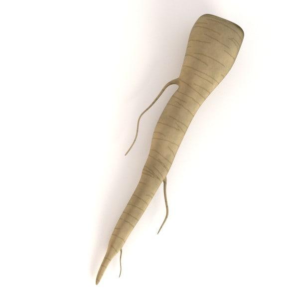 3d model parsley root