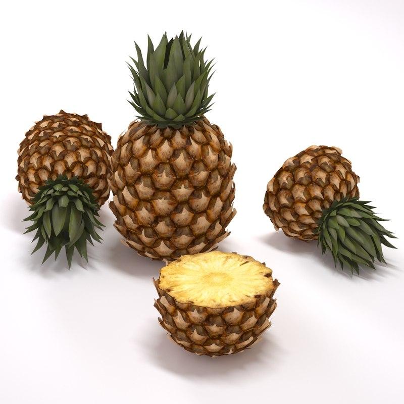 free max model pineapple