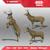 fbx deer animations