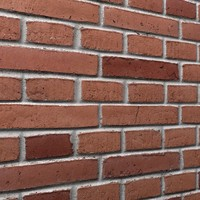 Bricks wall #10