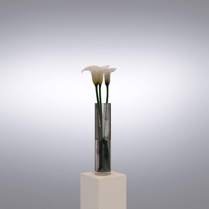 3d vase callas flowers model