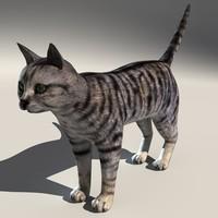 cat fur 3d model