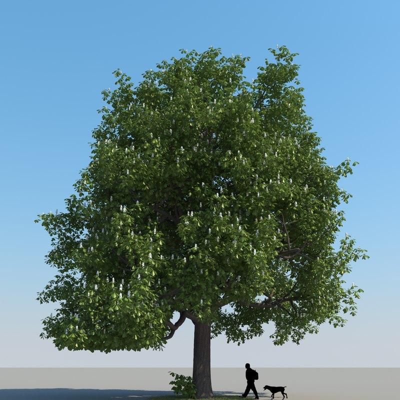 3d max chestnut tree leaf