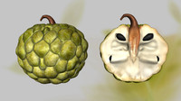annona apple 3d obj
