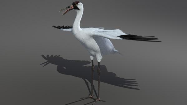 crane big feathers 3d max