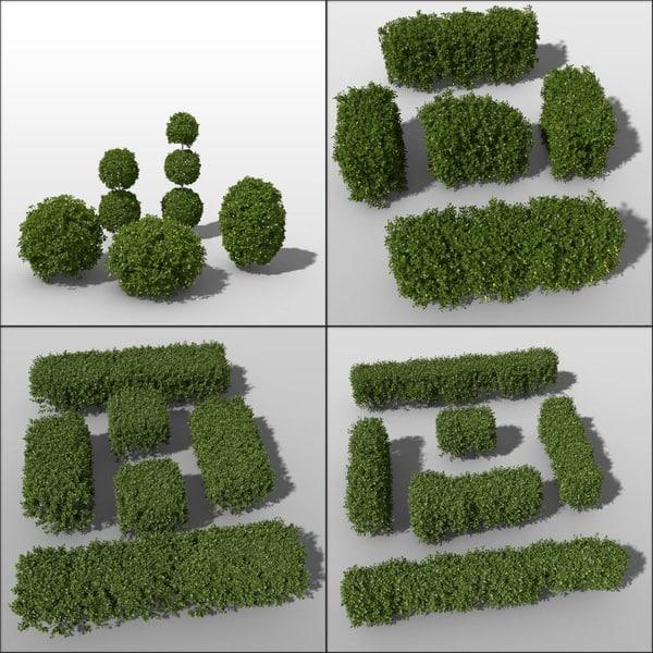 c4d shrub hedges