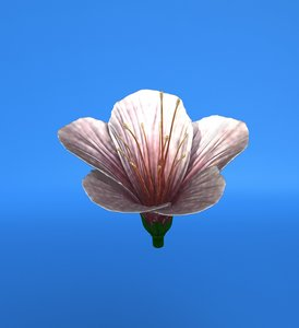 obj lily