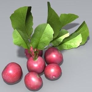 radish vegetable 3d max