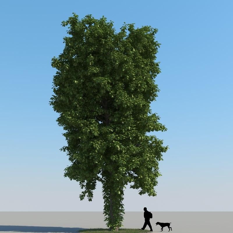 3d model realistic chestnut tree leaf