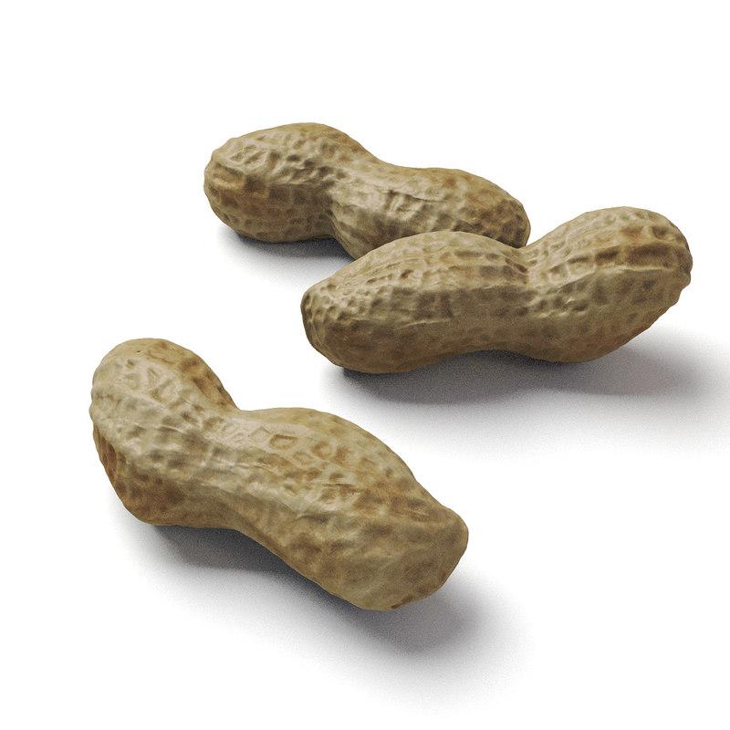 peanut scan 3d obj