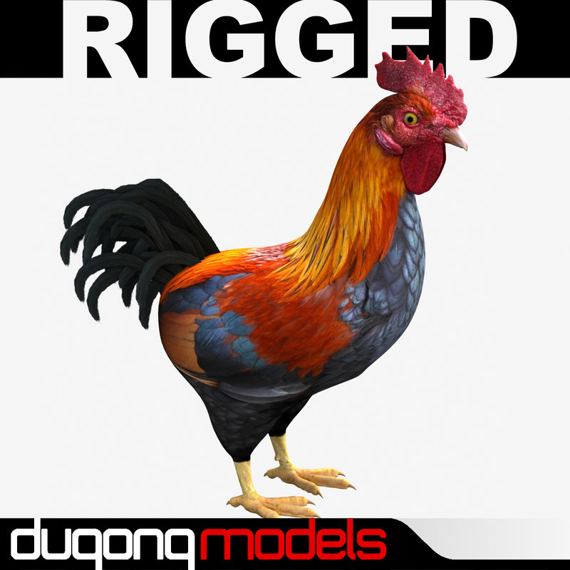 dugm02 rooster 3d dxf