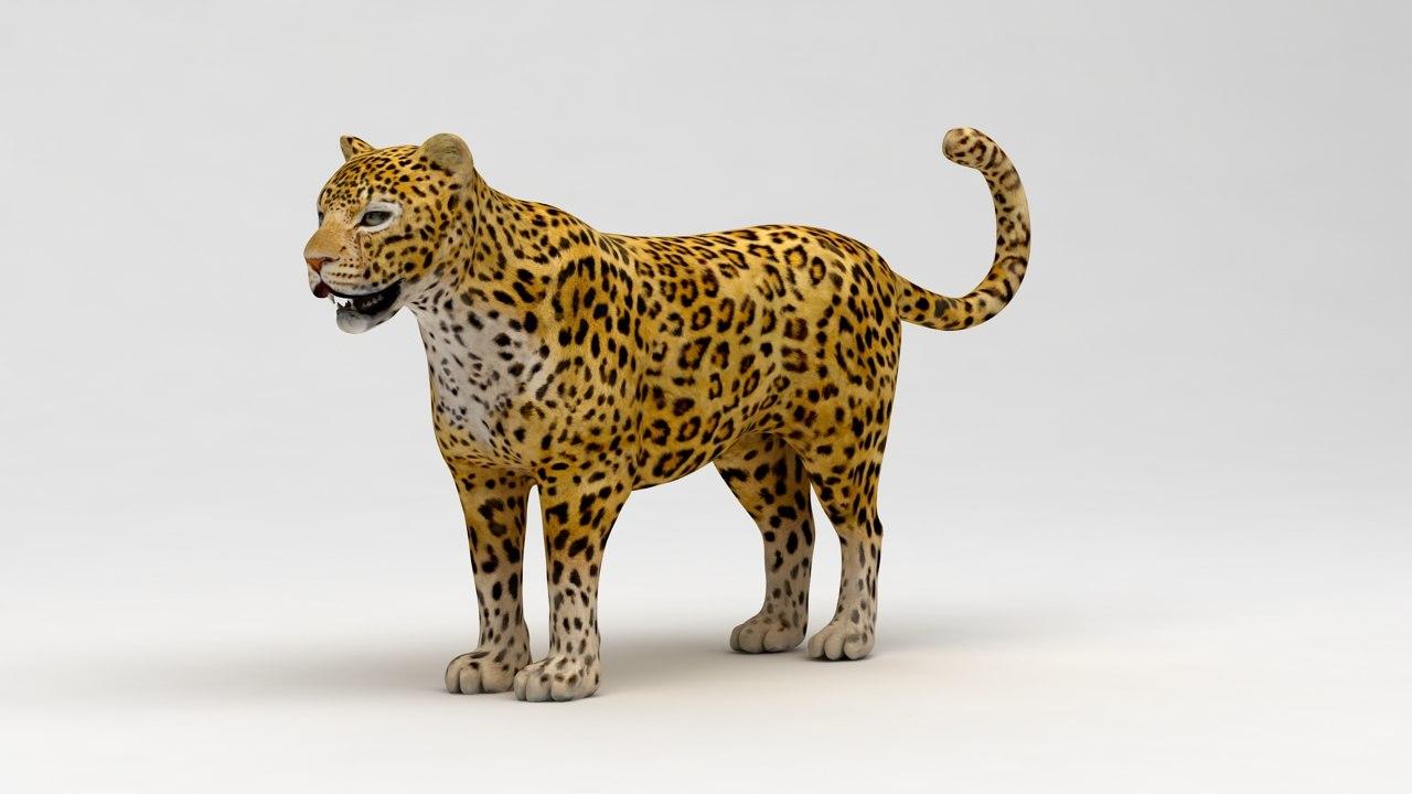 leopard 3ds