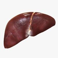 liver man 3d max