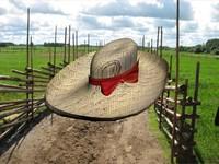3d bonnet model