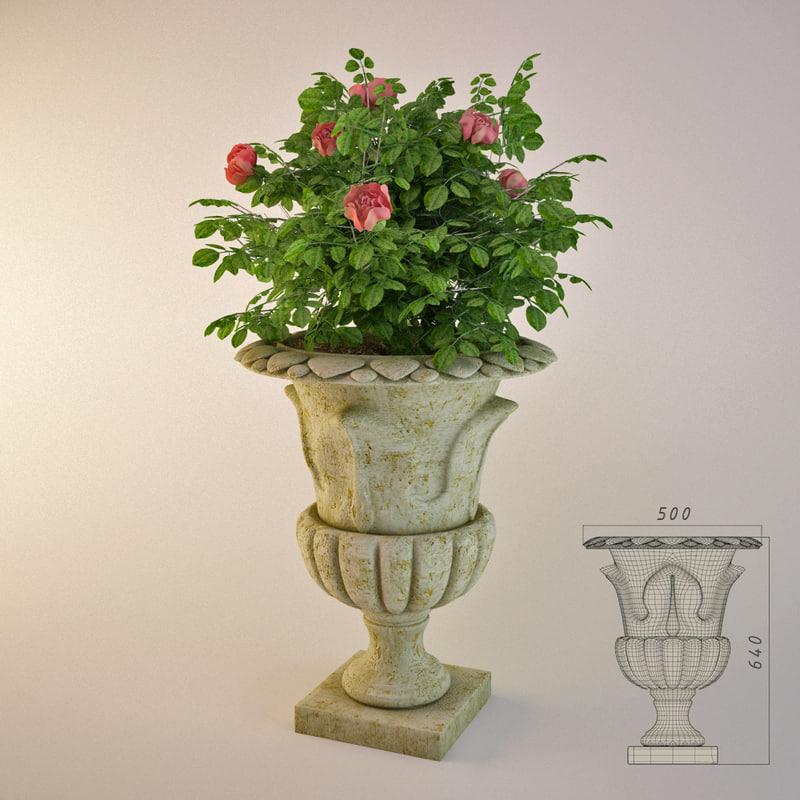 garden vase rose bush 3d model