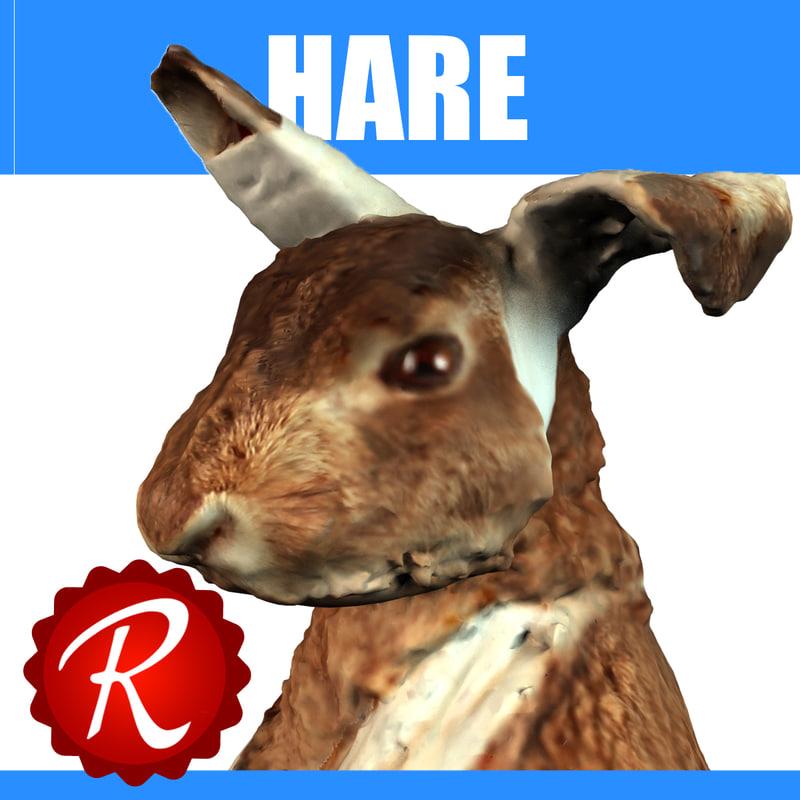 hare 3d model