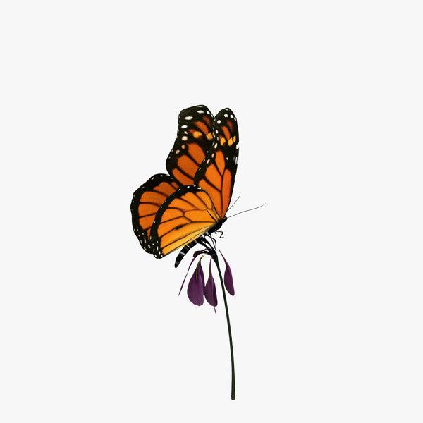 monarch butterfly flower animation 3d obj