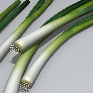3d salad spring onion