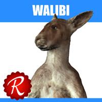 walibi 3d model