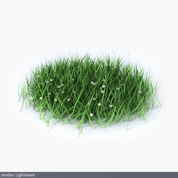 lwo green grass
