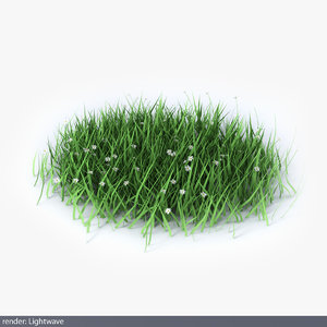 lwo green grass