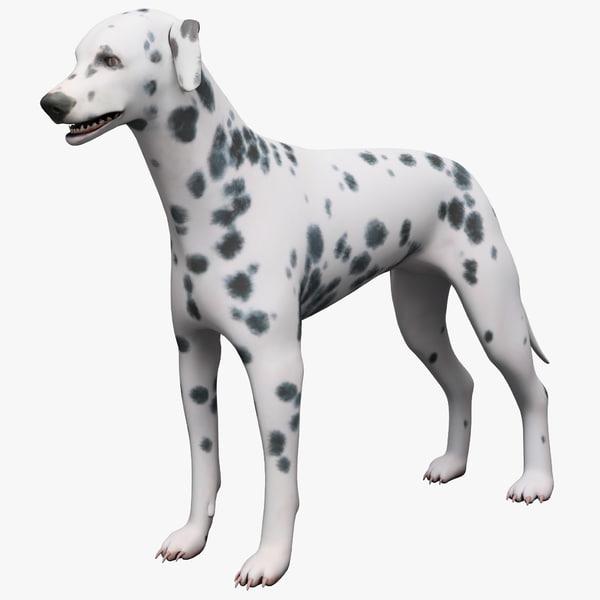 3dsmax dalmatian dog