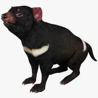 Tasmanian Devil Pose 2
