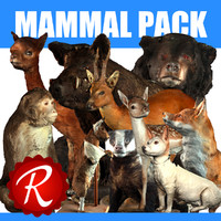 mammal animals max
