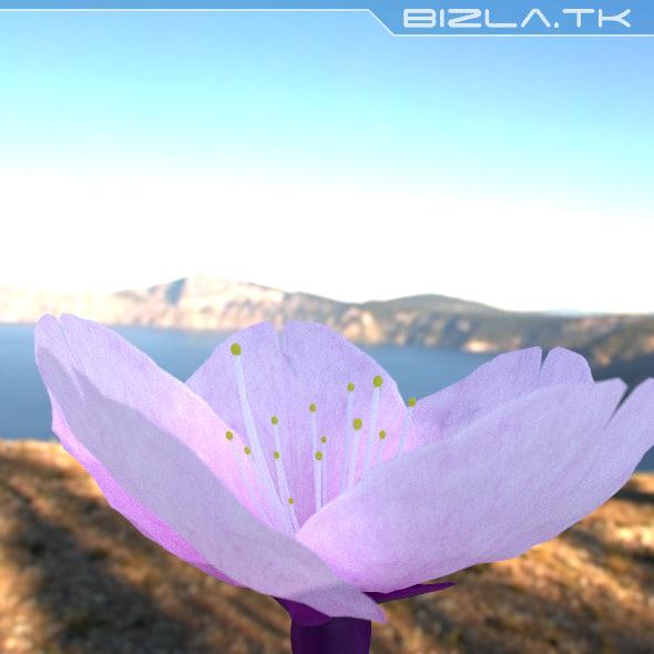 flower fbx