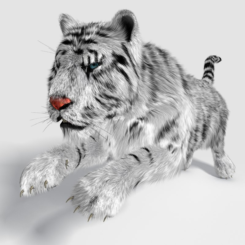 3d realistical tiger