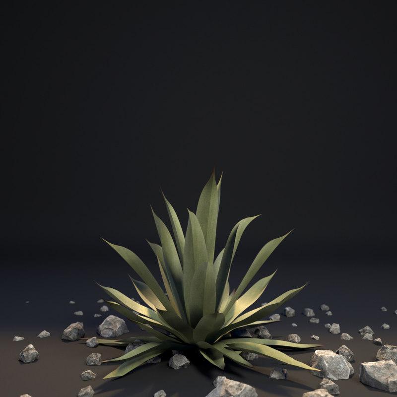 3d model agave