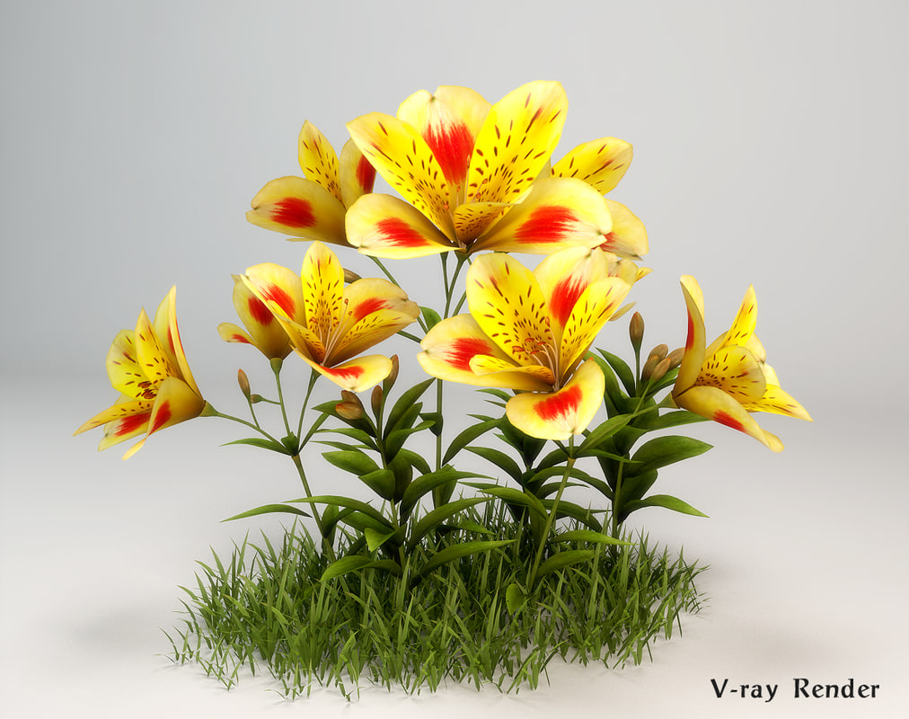 3d max alstroemeria flower