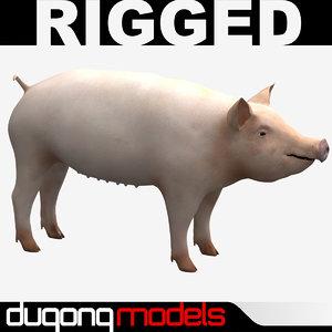 3d model dugm02 pig