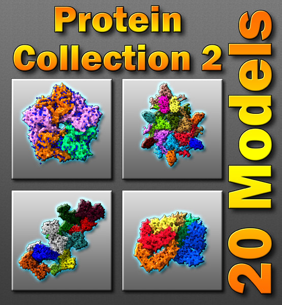 3d model 20 proteins