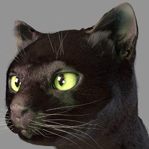 3d model head cat fur