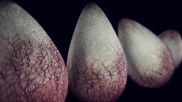 3d model alien egg